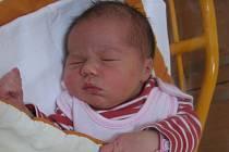Kateřina Novotná se rodičům Aleně a Pavlovi z Kralup nad Vltavou narodila v mělnické porodnici 15. října 2013, vážila 3,80 kg a měřila 52 cm. Na sestřičku se těší 2,5letý Václav.