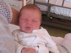 Kilián Šulc se rodičům Ivaně Trefné a Emanuelu Šulcovi z Přívor narodil v neratovické porodnici 10. března 2017, vážil 3,63 kg a měřil 48 cm. Na brášku se těší 4letý Jáchym.