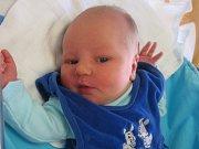 Vojtěch František Komeštík se rodičům Radce a Františkovi z Byšic narodil v mělnické porodnici 3. ledna 2017, vážil 3,96 kg a měřil 53 cm. Na brášku se těší 15letá Kristýna.