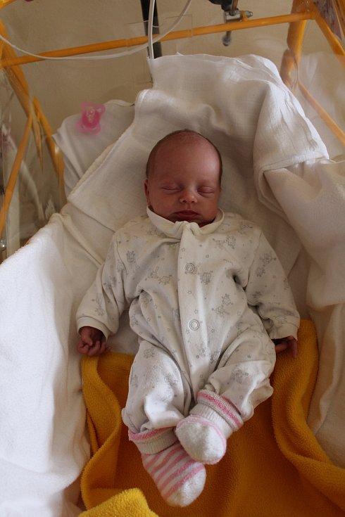 Emilie Břehovská se rodičům Daniele Zitové a Tomáši Břehovskému ze Zálezlic narodila 25. září 2017 v mělnické porodnici, měřila 40 centimetrů a vážila 1,83 kilogramu.