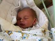 David Hajný se rodičům Barboře Dvořákové a Františku Hajnému narodil vmělnické porodnici 4. dubna 2017, vážil 3,28 kg a měřil 50 cm.