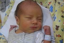 Michal Šimánek se rodičům Lucii Baslerové a Michalu Šimánkovi z Neratovic narodil v mělnické porodnici 14. července 2016, vážil 3,24 kg a měřil 52 cm.