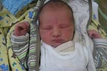 Liliana Ferčíková se rodičům Ivaně Ferčíkové a Martinu Kabrhelovi z Prahy narodila v mělnické porodnici 2. ledna 2013, vážila 2,35 kg a měřila 54 cm. Na sestřičku se těší 3,5letá Kristýnka.