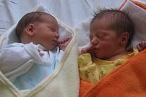 Dora a Prokop Beranovi se rodičům Olze a Přemyslovi z Mělníka narodili v mělnické porodnici 18. ledna 2013. Dora vážila 2,59 kg a Prokop vážil 2,63 kg. Na sourozence se těší 5letá Bára a 3letý Vítek.