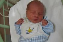 Adam Němeček se rodičům Lucii a Davidovi ze Škvorce narodil v mělnické porodnici 25. září 2013, vážil 2,71 kg a měřil 46 cm.