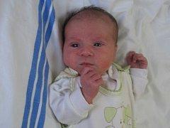 Karolína Prosická se mamince Karolíně Prosické z Horních Počapel narodila v mělnické porodnici 6. listopadu 2015, vážila 2,97 kg a měřila 48 cm.