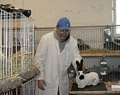 Cítovští chovatelé si letos připomínají kulatá výročí.
