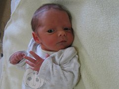 Eliška Haisová se rodičům Monice Mogyorósiové a Lubomíru Haisovi z Prahy 9 narodila v mělnické porodnici 20. září 2015, vážila 2,15 kg a měřila 44 cm.