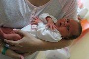Tereza Pokorná se rodičům Kateřině a Michalovi ze Sudova Hlavna narodila v mělnické porodnici 24. července 2017, vážila 2,62 kilogramu a měřila 45 centimetrů. Doma se na ni těší 5letý Míša.