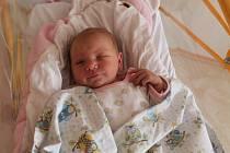 Adéla Šťastná, Mělník. Narodila se 10. 6. 2019, po porodu vážila 2490 g a měřila 46 cm. Rodiče jsou Radek Šťastný a Eliška Nováková.