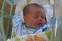 Antonín Bodiš se rodičům Barboře Vyšatové a Igoru Bodišovi z Lužce nad Vltavou narodil v mělnické porodnici 16. dubna 2014, vážil 3,60 kg a měřil 51 cm.