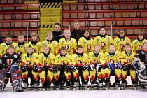 4. třída HC Junior Mělník - sezona 2008/2009.