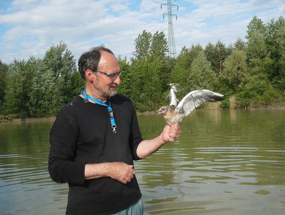 Ornitolog Vít Štancl se věnuje ptactvu ve středočeských pískovnách.