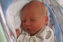 Vladimír Jadrný se rodičům Lence Darebné a Vladimírovi Jadrnému z Hostína u Vojkovic narodil v mělnické porodnici 2. září 2016, vážil 3,14 kg a měřil 49 cm.