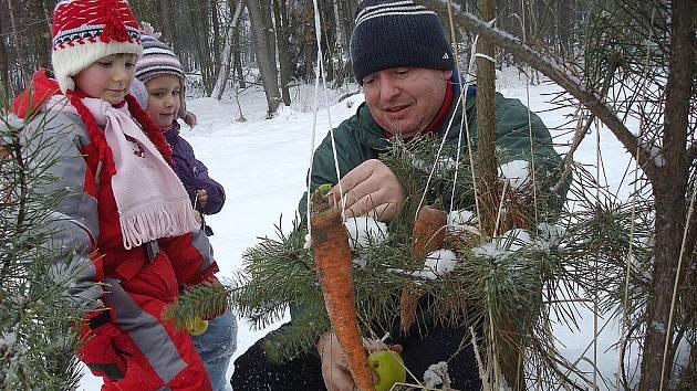 Děti vyrazily krmit lesní zvěř.