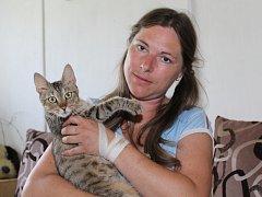 """Kočka z Polabí je mazlivá. """"Neumím si představit, že by někoho napadala,"""" diví se Jaroslava Tichá z útulku."""