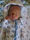 Theo Manuel Zemek se rodičům Anetě Kocourkové a Filipu Zemkovi z Prahy 6 narodil v neratovické porodnici 3. března 2017, vážil 3,30 kg a měřil 51 cm.