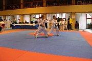 Mělník skončil na úctyhodném pátém místě. Na Moravu přitom z Mělníka přijelo jen jedenáct soutěžících. Některé ze soupeřících týmů měly na turnaji i desítky závodníků.