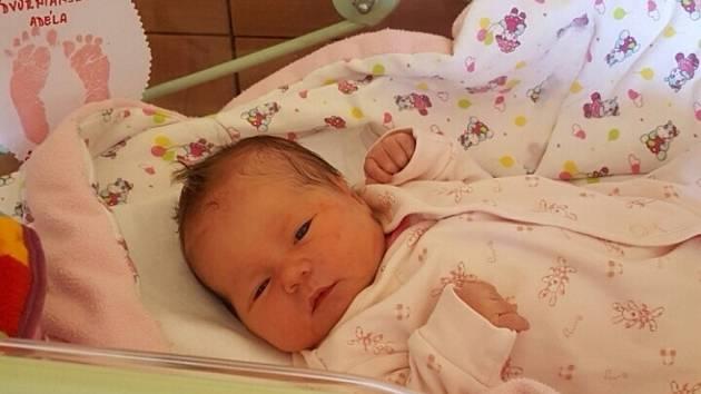 Adélka Nádvornianská se rodičům Evě Dědinové a Pavlovi Nádvornianskému z Kostelního Hlavna narodila v mělnické porodnici 21. dubna 2016, vážila 3,50 kg a měřila 51 cm.