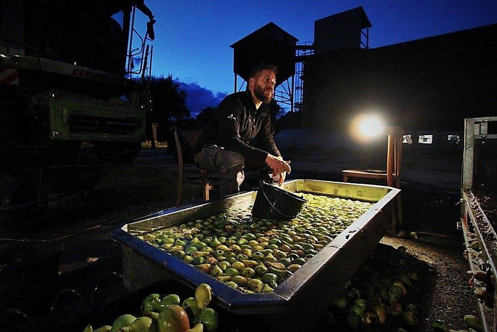 Dobrému cidre předchází velký podíl ruční práce. Zkušební provoz.