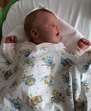NELLA KREJČÍ se rodičům Kateřině a Davidovi Krejčím z  Kobylis, narodila v mělnické nemocnici 13. 5. 2018, vážila 3,480 kg, měřila 51 cm. Doma na ni čeká Bella 4 roky a Dominik 2 roky.