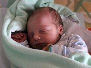 Arnošt Čáp se rodičům Gabriele a Arnoštovi zKralup nad Vltavou narodil vmělnické porodnici 5. dubna 2017, vážil 3,35 kg a měřil 49 cm.