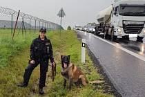 I díky profesionální práci policejní psovodky a jejího čtyřnohého parťáka Atreye byl řidič velmi rychle dopaden a potrestán.
