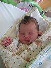 Denisa Oršulíková se rodičům Janě a Robertovi z Mělníka narodila v mělnické porodnici 30. března 2017, vážila 3,97 kg a měřila 50 cm. Na sestřičku se těší 7letý Nicolas a 3letá Natali.