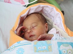 BÁRA CHÝLKOVÁ se rodičům z Prahy narodila v mělnické porodnici 29. ledna 2018, vážila 3,10 kg a měřila 50 cm.