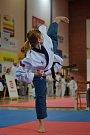 S korejským bojovým sportem začala před šestnácti lety, když šla okouknout nábor mělnického oddílu Hansoo.
