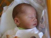 DAVID Budža se rodičům Lucii Denkové a Tomáši Budžovi z Cítova narodil v mělnické porodnici 16. srpna 2016, vážil 3,77 kg a měřil 52 cm. Na brášku se těší 8letý Tomáš.