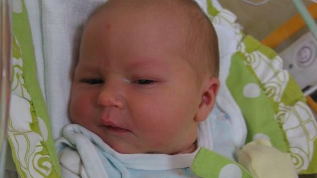 Alžběta Samková se rodičům Lence a Karlovi z Čihadel u Staré Lysé narodila v mělnické porodnici 5. února 2013, vážila 3,53 kg a měřila 52 cm. Na sestřičku se těší 5letá Irenka.