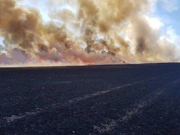 Požár pole u obce Úžice.
