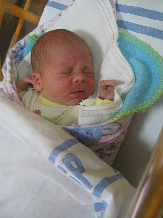 Dominik Dědič se rodičům Daně Dědičové a Bohouši Titkovi ze Štětí narodil v mělnické porodnici 20. ledna 2015, vážil 3,44 kg a měřil 50 cm. Na brášku se těší 5letý Honzík a 3letý Kubík.