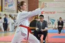 Anna Miškovská se taekwondu věnuje od svých šesti let.