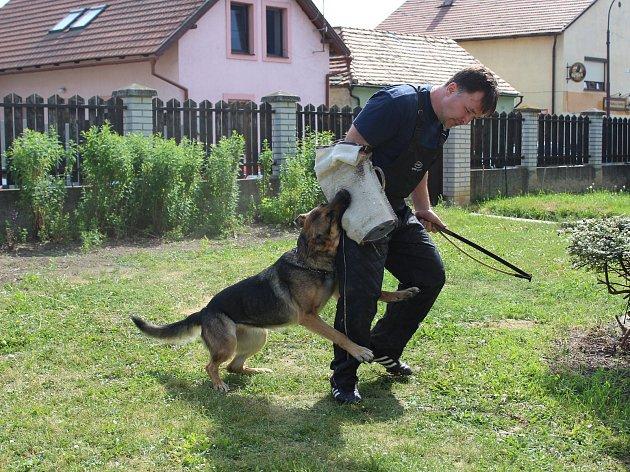 Policejní psovodi předváděli umění služebních psů na Základní škole v Lužci nad Vltavou.