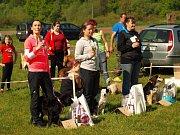 Voříškiáda a výstava psů bez průkazu původu má za sebou první úspěšný ročník. Konala se o víkendu ve Klích u Mělníka na hasičském hřišti.