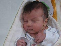 Aleš Vítek se rodičům Evě a Kamilovi ze Skuhrova narodil v mělnické porodnici 12. května 2016, vážil 3,86 kg a měřil 52 cm.