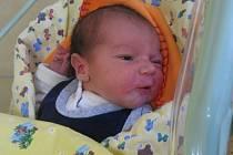 Petr Hedbávný se rodičům Petře Gazdové a Karlovi Hedbávnému z Mělníka narodil v mělnické porodnici 27. září 2013, vážil 3,94 kg a měřil 52 cm.