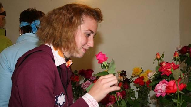 Patnáctý roční výstavy růží na zámku Veltrusy