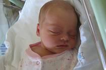 Hana Palánová se rodičům Anně a Zdeňkovi z Mělníka narodila v mělnické porodnici 5. srpna 2014, vážila 2,85 kg a měřila 48 cm.
