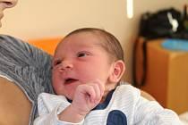 Marcus Ferenc, Neratovice. Narodil se 21. 8. 2019, po porodu vážil 3 390 g a měřil 51 cm. Rodiči jsou Kristýna Ferencová a Milan Opletal.