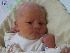 Matěj Milan Zvonař se rodičům Jiřině Bubeníčkové a Milanu Zvonařovi z Libiše narodil v mělnické porodnici 13. října 2016, vážil 3,35 kg a měřil 51 cm.