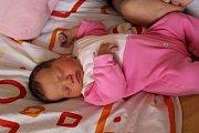 NATÁLIE Geruthová se rodičům Lucii Geruthové a Peterovi Bártovičovi z Úval narodila v mělnické porodnici 9. dubna 2017, vážila 3,73 kg a měřila 53 cm.
