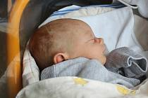 David Šoltys, Mělnické Vtelno. Narodil se 18. 5. 2019, po porodu vážil 3480 g a měřil 50 cm. Rodiče jsou David a Božena Šoltysovi.