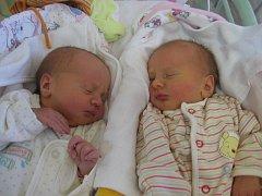 Kateřina a Veronika Nových se rodičům Tetyaně Pankratyevové a Jakubovi Novému z Mělníka narodily v mělnické porodnici 14. září 2015. Kateřina vážila 2,62 kg a měřila 48 cm a Veronika vážila 2,78 kg a měřila 49 cm. Na sestřičky se těší skoro 3letý Vládík.