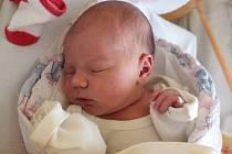 Lillien Homolková se rodičům Lucii a Lukášovi z Liběchova narodila v mělnické porodnici 23. ledna 2015, vážila 3,13 kg a měřila 47 cm.
