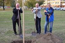 Zástupci partnerských měst na místě v loňském roce vysázeli lipovou alej.