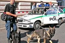 PRÁZDNÁ ŠKOLA. Všechna zákoutí prohledali policejní psi, cvičení na hledání výbušnin.