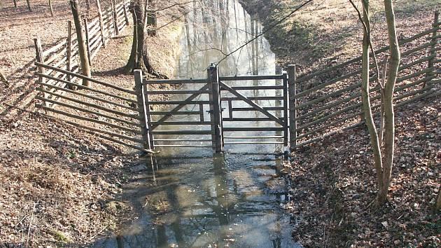 Do vyčištěného koryta potoka se vrátila voda.